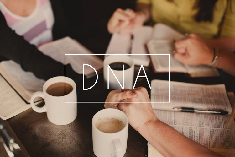 dna-group